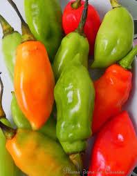 Piments végétariens ou piments rasta