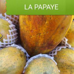 Papaye du Bresil